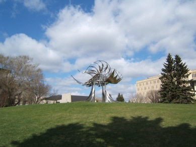 Prairie_Chicken_on_University_of_Calgary_campus